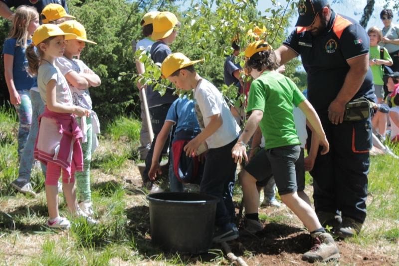 AIB festa degli alberi 2014-89