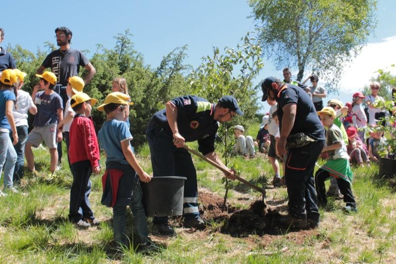 AIB festa degli alberi 2014-91