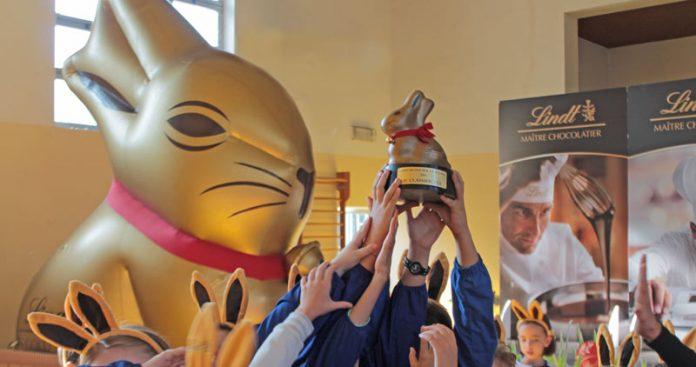 Gold Bunny aiuta le scuole